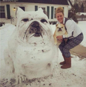 ultimate snowdog