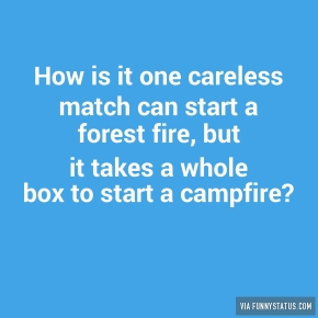 how-is-it-one-careless-match-can-start-a-forest-fire-3645