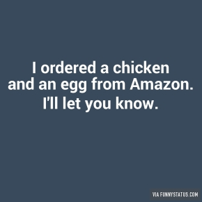 i-ordered-a-chicken-and-an-egg-from-amazon-ill-let-5608