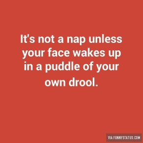 its-not-a-nap-unless-your-face-wakes-up-in-a-puddle-9668