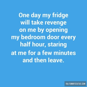 one-day-my-fridge-will-take-revenge-on-me-by-opening-3489