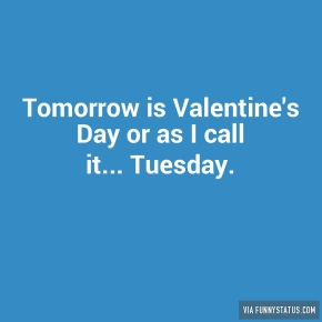 tomorrow-is-valentines-day-or-as-i-call-it-tuesday-6514