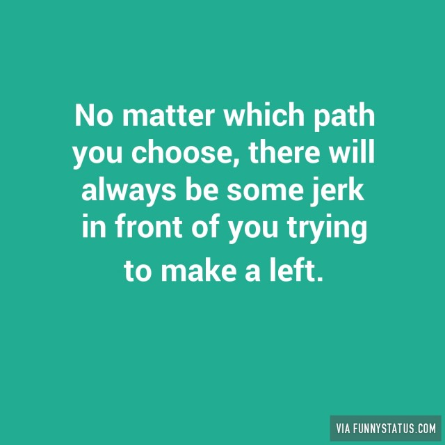 no-matter-which-path-you-choose-there-will-always-be-some-jerk-in-front-of-you-trying-to-make-a-left-1302